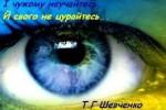 глаз шевченко