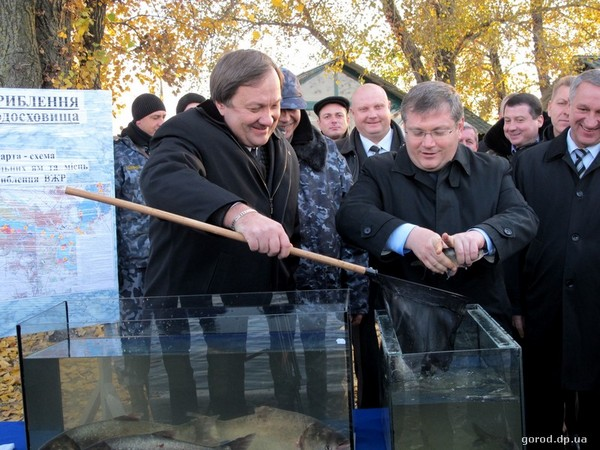 фото gorod.dp.ua